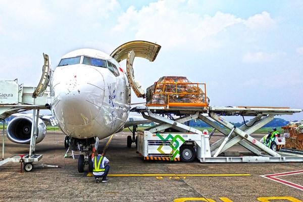 Larangan Mudik, Maskapai Ini Masih Layani Penumpang di Bandara Ahmad Yani