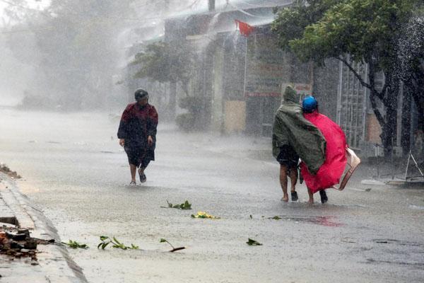 Angin Tumbangkan Pohon di Jepara, 2 Rumah Rusak