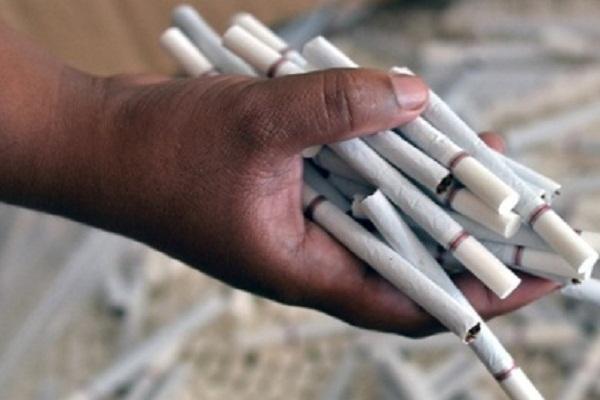 Bea Cukai Jateng Sita 616.000 Batang Rokok Ilegal di Tol Semarang-Batang
