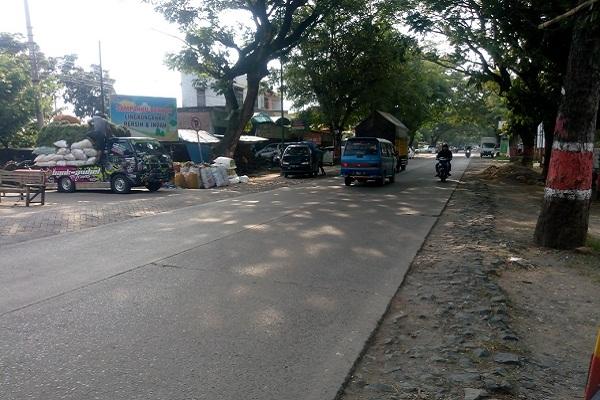 120 Pohon Ditebang Gegara Jalan di Purwodadi Dilebarkan