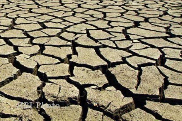 97 Desa di Grobogan Alami Kekeringan & Krisis Air Bersih