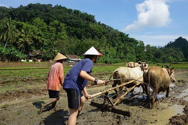 Desa Muncar Dulu Dihindari, Sekarang Jadi Ekowisata Favorit Turis