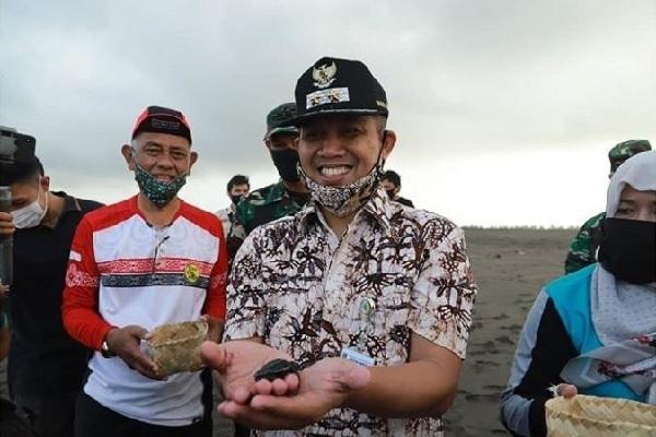 Hari Konservasi Alam, Tukik-Tukik Bebas di Kebumen