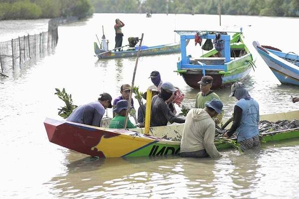 BPDASHL Solo Mulai Tanam Mangrove di Pangkah Kulon