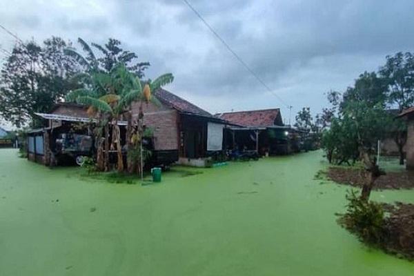 Heboh! Air Banjir Di Pekalongan Bewarna Hijau