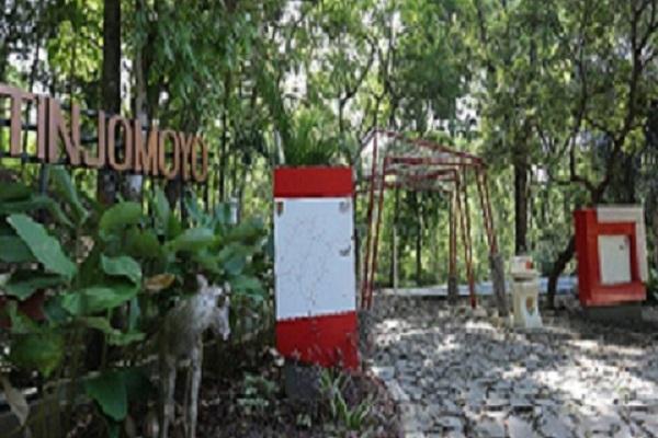 Merasakan Sensasi Joging di Hutan Wisata Tinjomoyo